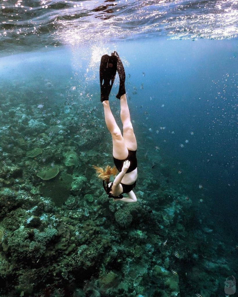 What You Don't Want to Do When Snorkeling in Komodo